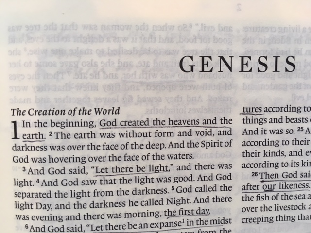 Genesis 1 26 31 The Image Of God Dad To Daughters